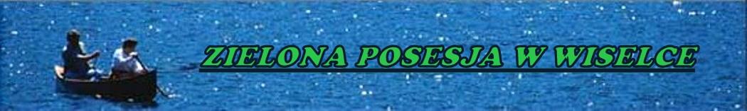Zielona Posesja - domki nad morzem